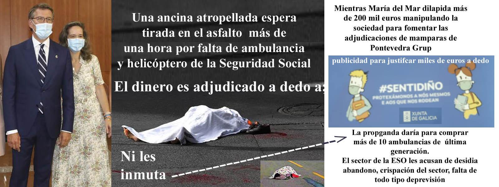 Mar Sánchez Sierra experta del PPdeG en alimentar el inframundo del dinero  público dando rienda suelta a las adjudicaciones para que acabe en OFF  SHORES, mamparas, donativos anónimos, mascarillas falsas etc. -