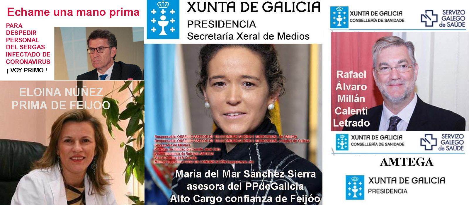 Feijóo utiliza a su prima Eloina Núñez para despedir del Sergas al personal  infectado como premio a su labor y de postre les pide dinero para luchar  contra el coronavirus. - Xornal